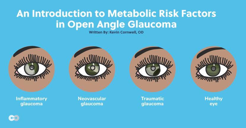 An Introduction to Metabolic Risk Factors in Open Angle Glaucoma