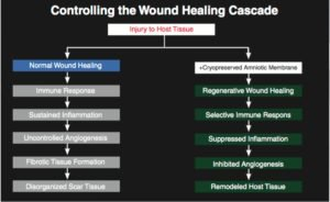 review of ophthalmology controlling the wound healing cascade