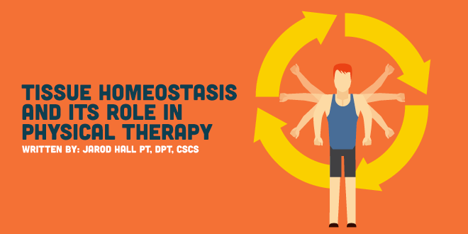 Tissue Homeostasis and its Role in Exercise Dosage