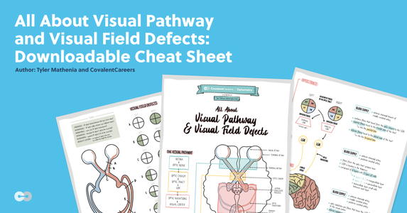All About Visual Pathway and Visual Field Defects: Downloadable Cheat Sheet