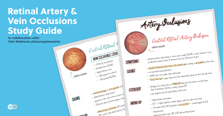 Retinal Artery and Vein Occlusions: Downloadable Study Guide