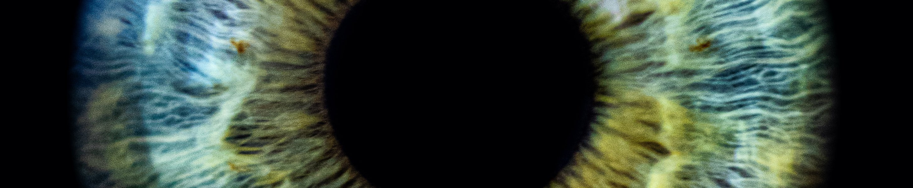 ZEISS Header Image, pupil